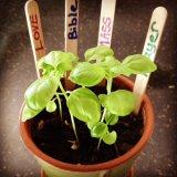 Preparing our soil